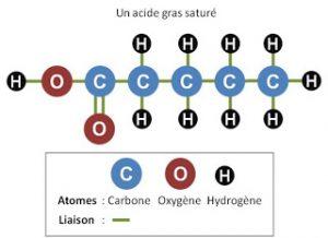 acide-gras-sature-sauvonsnotrepeau.fr